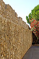 France-002652 - Curtain Wall (15310502074).jpg