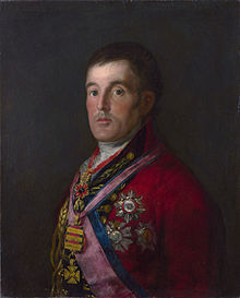 Half-length portrait of Wellington turned slightly to the left, wearing 18th-century British military officers uniform and many decorations, including several ribbons across his chest and a large star.