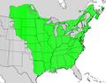 Fraxinus pennsylvanica.png