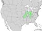 Fraxinus quadrangulata range map 4.png