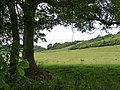 From the North Downs Way, near Wrotham - geograph.org.uk - 1383252.jpg