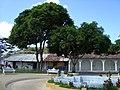 Fuente Parque D C. Victoria - panoramio.jpg