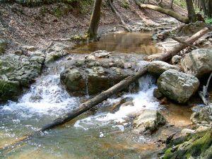 http://upload.wikimedia.org/wikipedia/commons/thumb/d/d4/Gaja_river.jpg/300px-Gaja_river.jpg