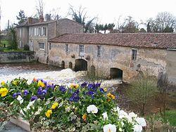 Gajac Mill.jpg