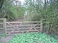 Gate to footpath - geograph.org.uk - 395495.jpg