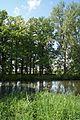 Geschützte Bäume an der Salzuflerstr. Meyer zu Bentrup, Bielefeld-Heppen, Wassermühle.jpg