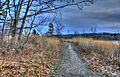 Gfp-final10 cherokee marsh hiking path.jpg