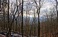 Gfp-missouri-weldon-springs-cloudy-sunset-over-forest.jpg