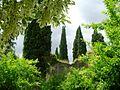 Giardino di Ninfa 23.jpg