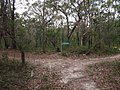 Gibberagong Trail - panoramio (15).jpg