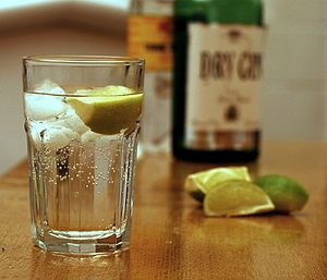 Un gin tonic cos seus ingredentes
