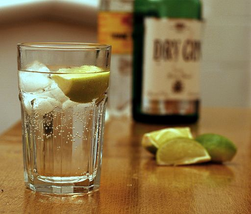 Gin and Tonic with ingredients