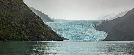 Glaciar de Aialik, Bahía de Aialik, Seward, Alaska, Estados Unidos, 2017-08-21, DD 50.jpg