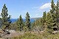 Glenbrook - panoramio (10).jpg