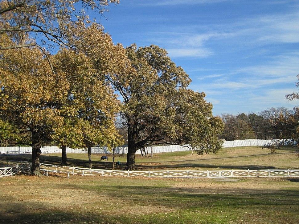Graceland 2010-12-18 Memphis TN 17
