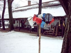Grange, winter, Hungary.jpg