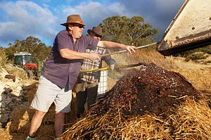 Turning a compost pile for viticulture