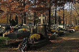 Albert Chmielowski - Chmielowski's Grave