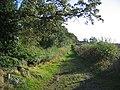 Green lane, Newton. - geograph.org.uk - 58417.jpg