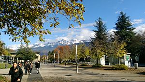 Université Grenoble Alpes - Central avenue on Main campus in Saint-Martin-d'Hères (autumn 2016)