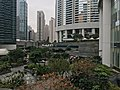 HK Pacific Place no 2 garden.jpg