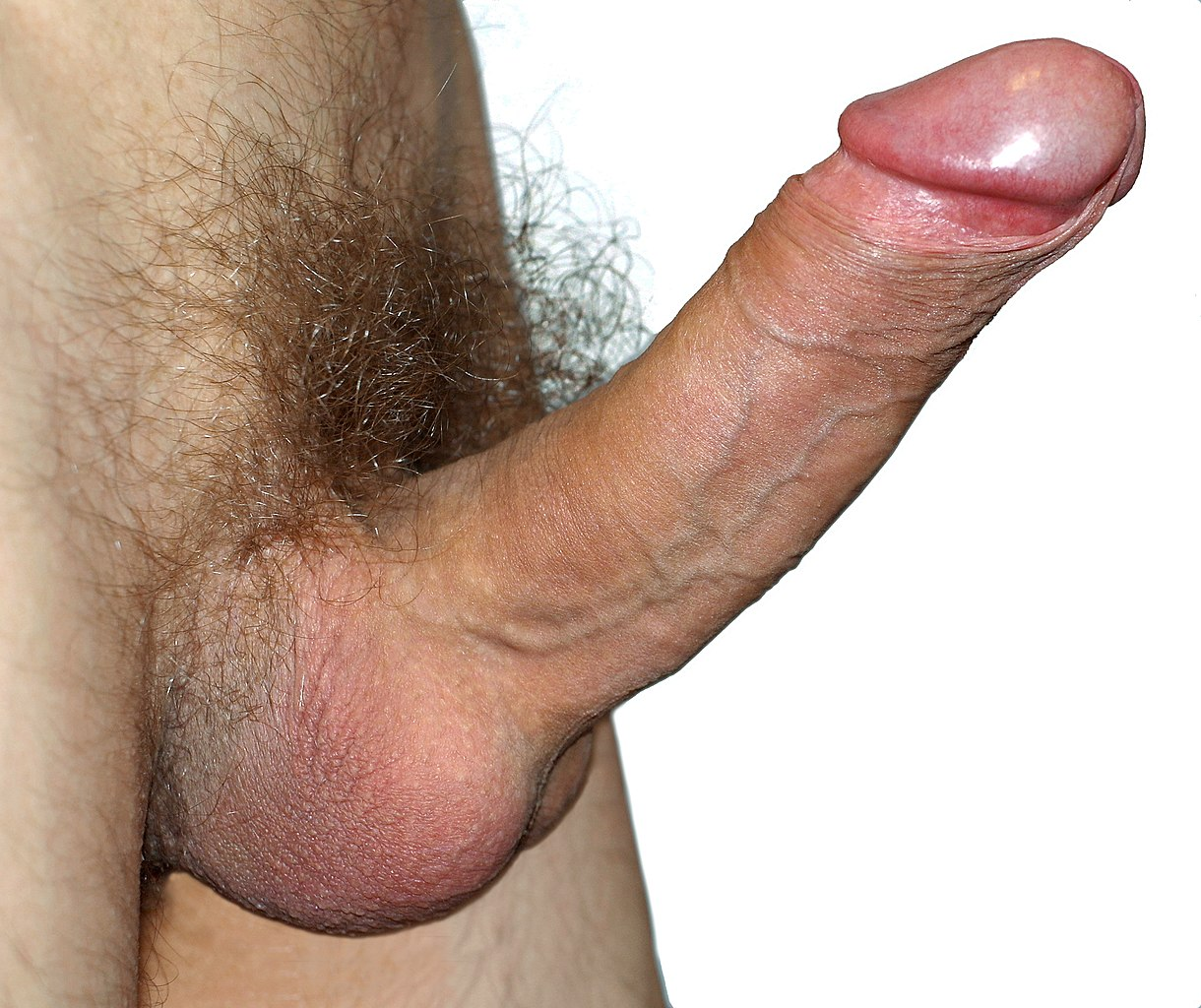 Ball cock ring stretcher