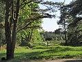 Haldon Forest Park - geograph.org.uk - 814716.jpg