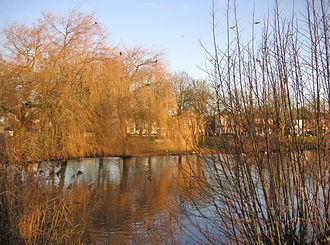 Ham Common, London - The pond on Ham Common