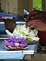 Hands with Flowers - Outside Temple of the Tooth - Kandy - Sri Lanka (13949498767).jpg