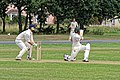 Hatfield Heath CC v. Thorley CC on Hatfield Heath village green, Essex, England 01.jpg