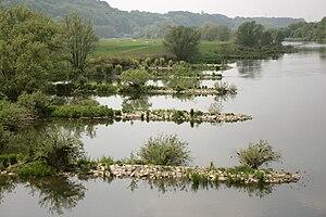 Groynes on a river