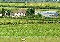 Hazelgrove Farm - geograph.org.uk - 1362887.jpg