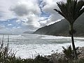 Heaphy Track Along the Coast of the Tasman Sea.jpg