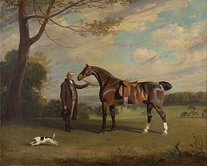 The Earl of Shrewsbury's Groom Holding a Hunter