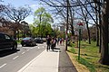 High Park, Toronto DSC 0126 (17367986216).jpg