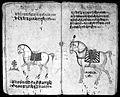Hindi Manuscript 191, fols 52 verso 53 recto Wellcome L0024245.jpg