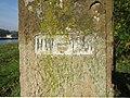 Hochwassermarke von 1881 am Rhein km 234 (2012).jpg