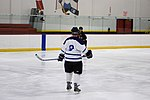 Hockey 20081019 (4) (2956719181).jpg
