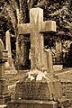 Hollywood Cemetery-9477.jpg
