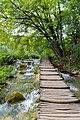 Holzweg über dem Fluss Korana im Nationalpark Plitvicer Seen, Kroatien (48670482102).jpg