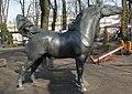 Horse Poznan ZOO.JPG