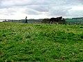 Horse Training, High Farm - geograph.org.uk - 159736.jpg