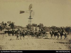 Daly Waters, Northern Territory - Image: Horses and carriage
