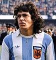 Houseman argentina.jpg