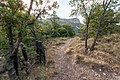 Hunter Canyon Trail.jpg