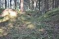 Ierakumis pie Braslas kapsētas, Valgundes pagasts, Jelgavas novads, Latvia - panoramio.jpg