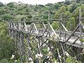 Indiana jones bridge.JPG
