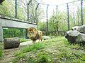 Ishikawa Zoo - Animals - 04 - 2016-04-22.jpg