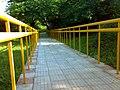 JNU Yellow Railings Alley.jpg