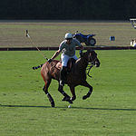Jaeger-LeCoultre Polo Masters 2013 - 31082013 - Match Lynx Energy vs Legacy 27.jpg